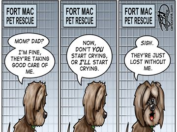 Today's cartoon: Fort McMurray pets